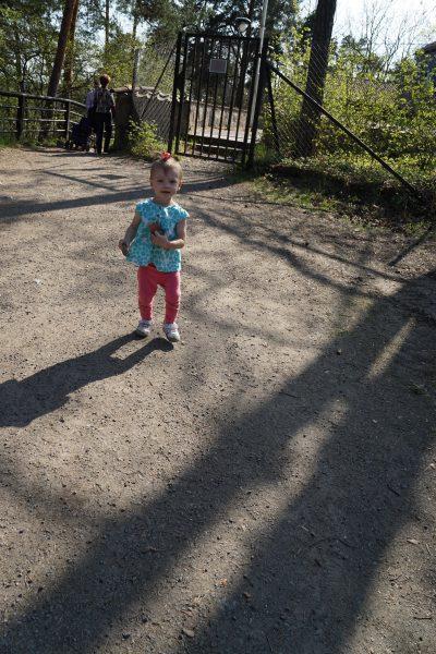 Carrying her treasured rocks
